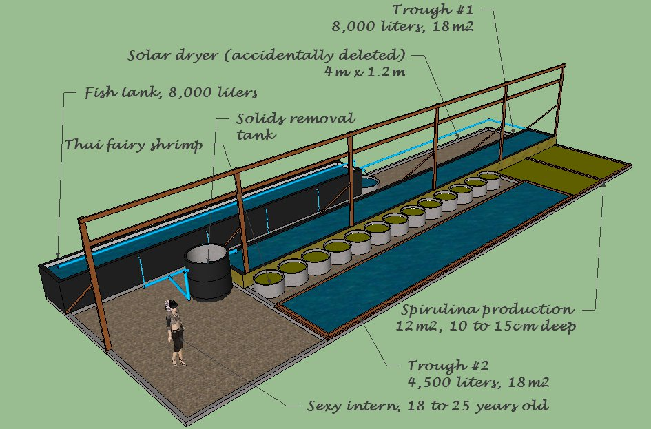 From Algae To Wabbits A Revised Aquaponic System Design